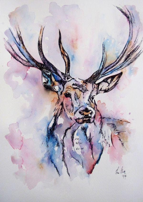 Deer Watercolor Illustration