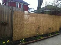 Backyard X-Scapes 6 ft. H x 16 ft. L Reed Fencing | Reed ...