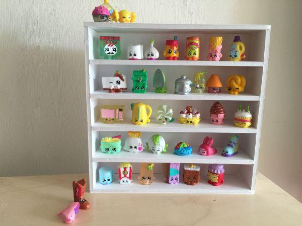 S Hopkins DIY Display Shelf