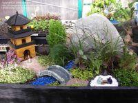 tiny japanese garden | Miniature & Fairy Gardens ...
