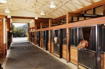 Horse Stable Designs