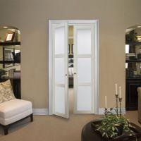 Reliabilt 3-Lite Frosted Glass Pivot Interior Door (Common ...
