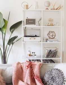 My plant is hatching  new leaf and  am  excited also home decor rh za pinterest