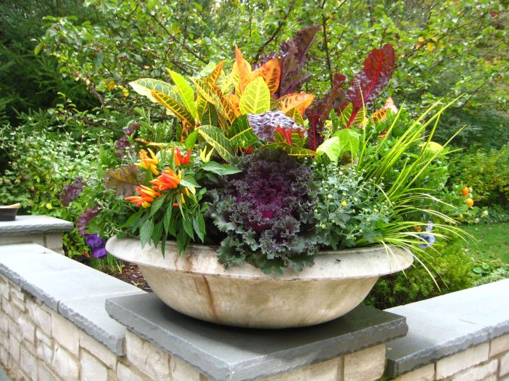 Backgrounds fall flower garden ideas for clean up tips desktop hd wahkeena must do this ideas