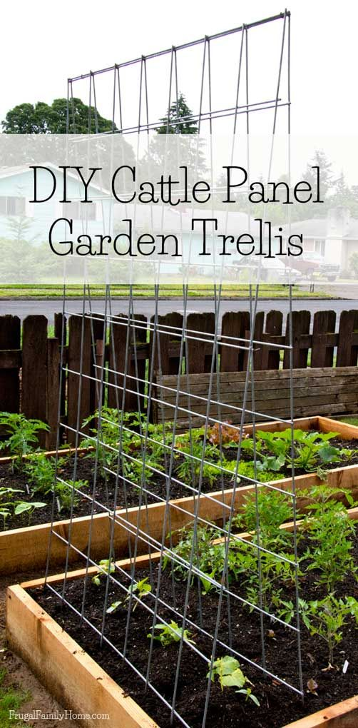 DIY Garden Trellis Gardens Raised Beds And Diy Trellis