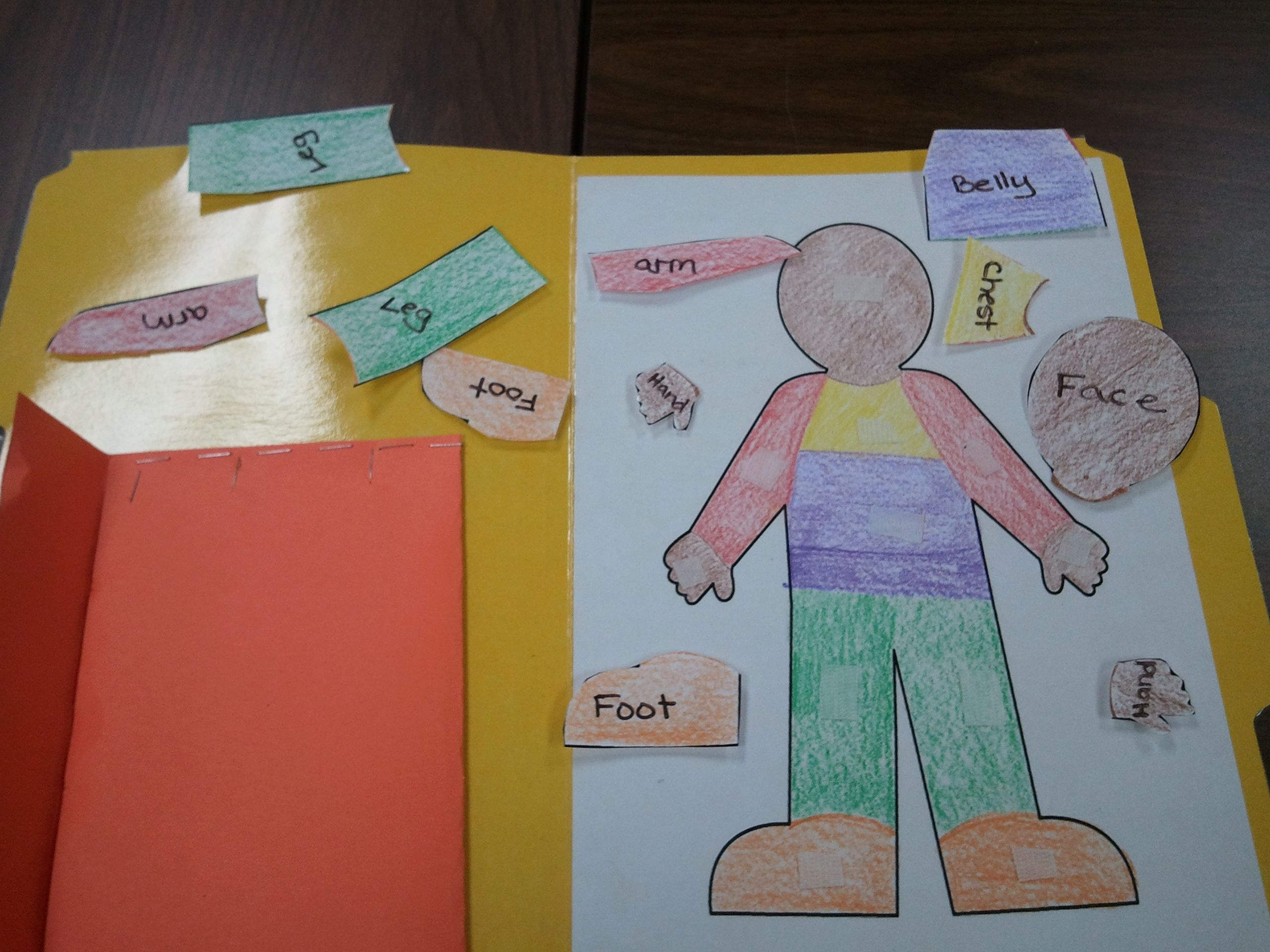 A Great Way To Teach Kids Body Parts A Velcro File Folder