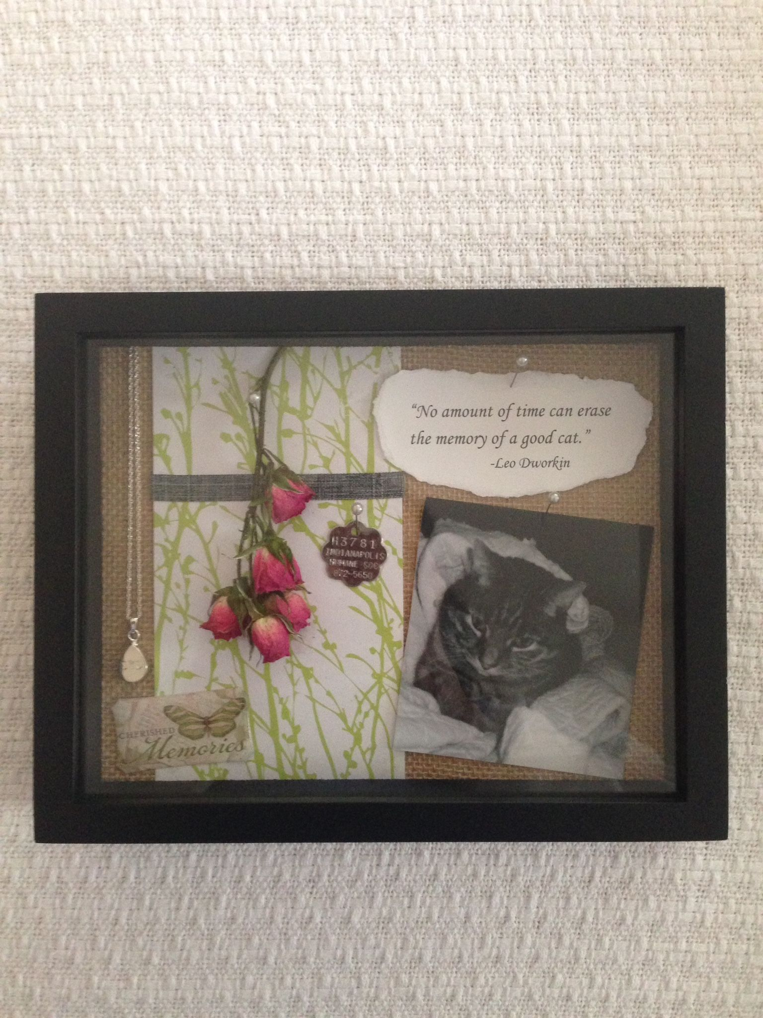 Cat Memorial Shadow Box I Made After Losing My Companion