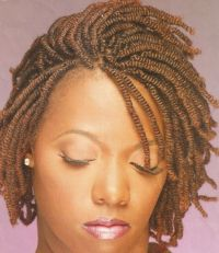 nubian twist braids | nubian twists | Hair I Like ...