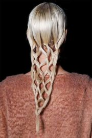 braids net hairstyle - unique