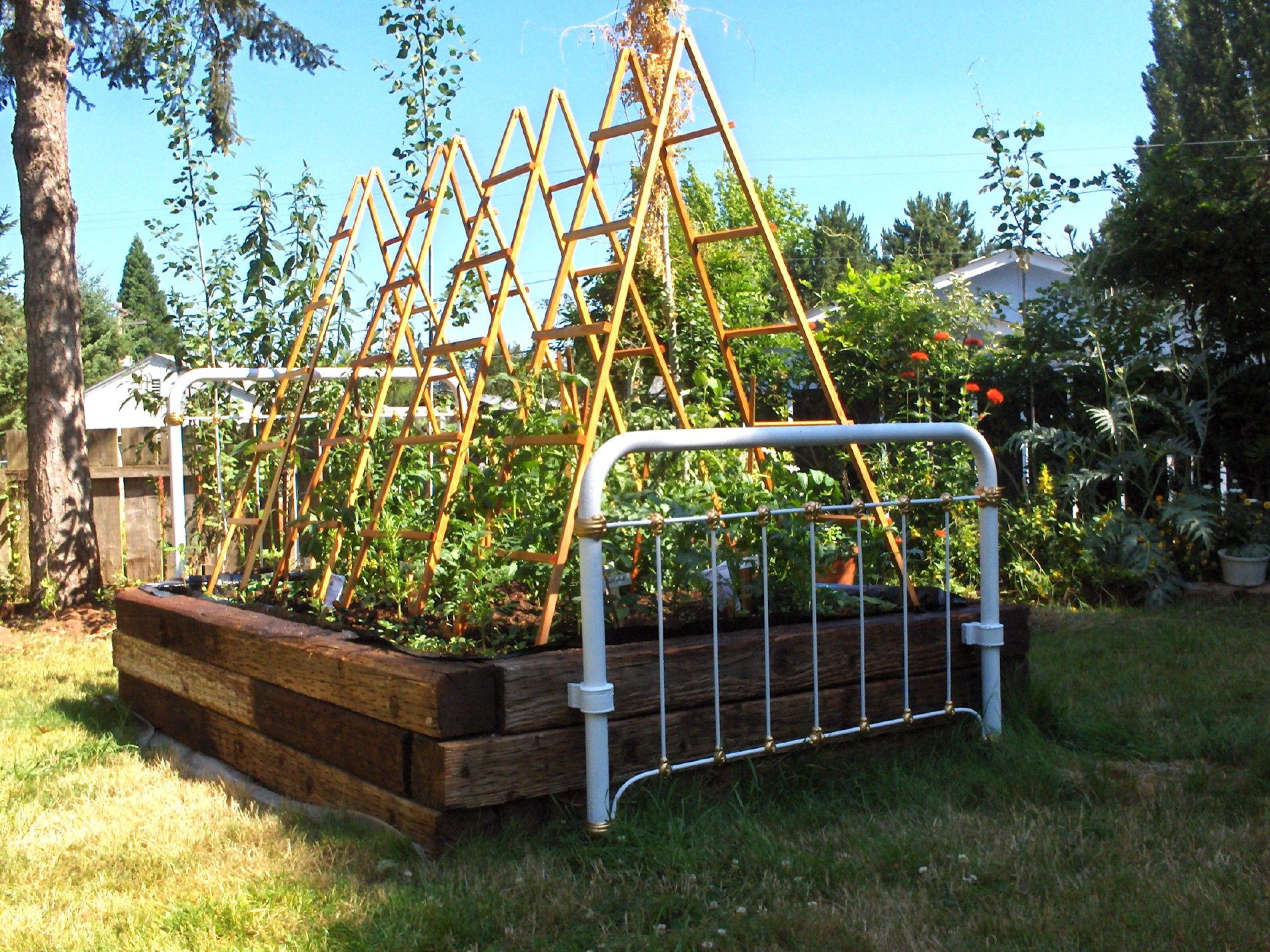 Tomato Trellis Designs Our Latest Trellis Design Is Not Just