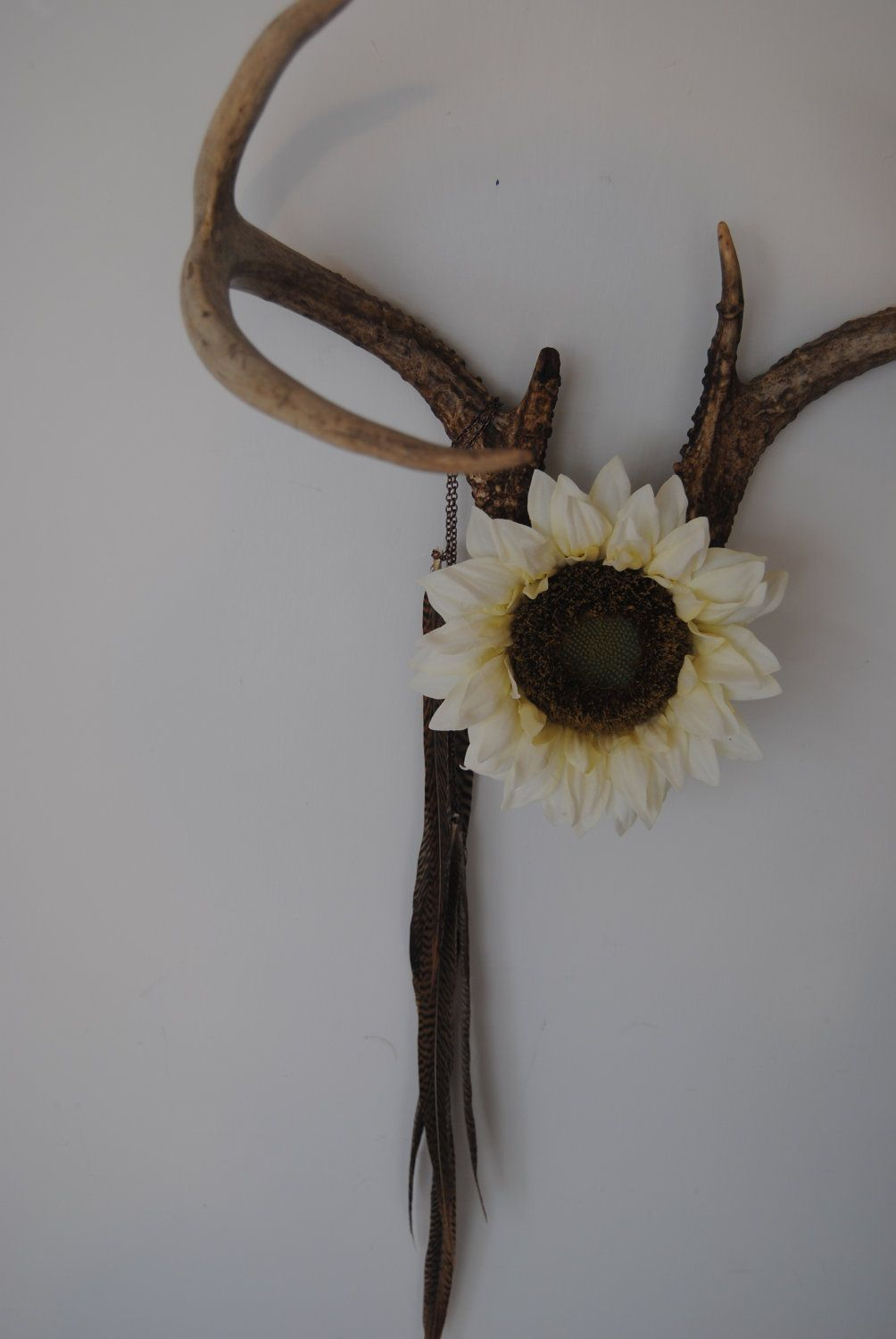 Deer antlers with flower  feathers wall hanging taxidermy point rack home decor ivory also rh pinterest