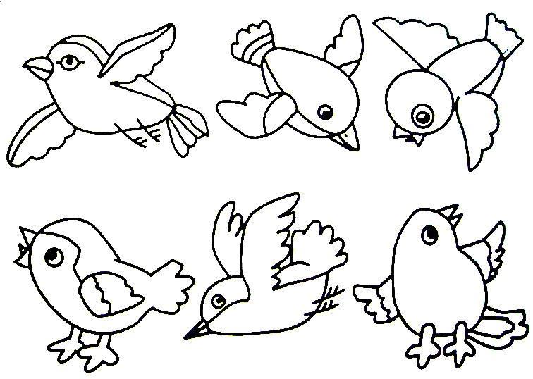backyard bird activities for kids~feeders, crafts