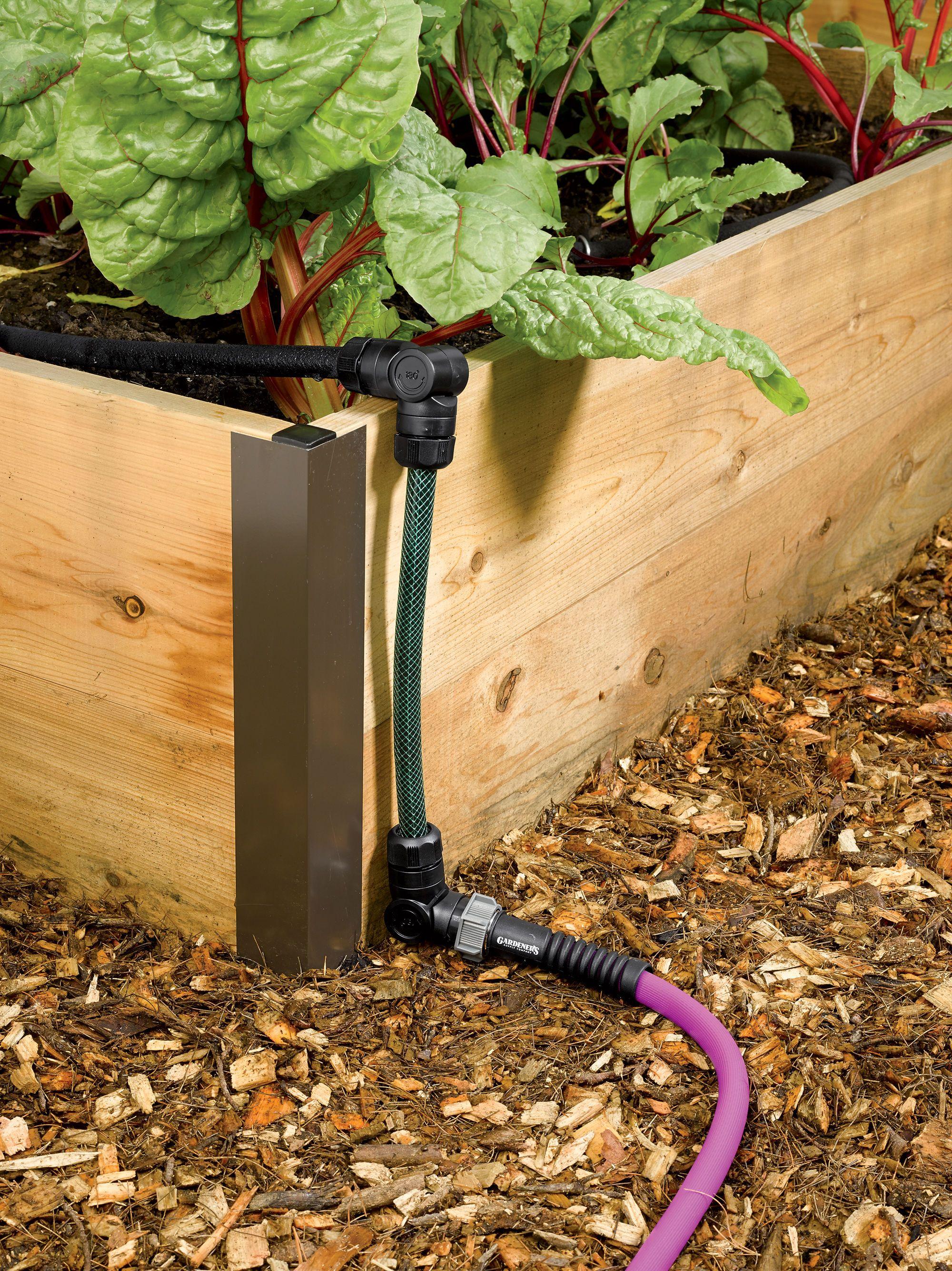 Raised Vegetable Garden Box