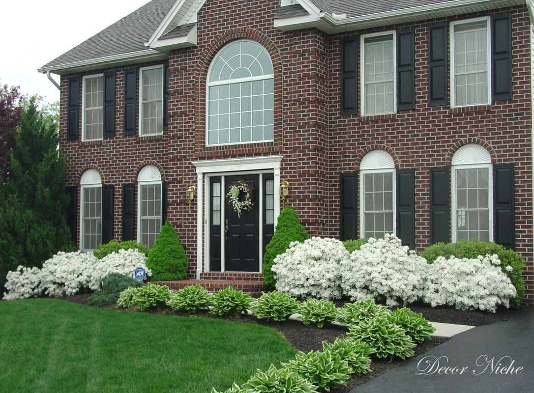 Superieur Bushes For Front Of House Landscape Design Pinterest Curb