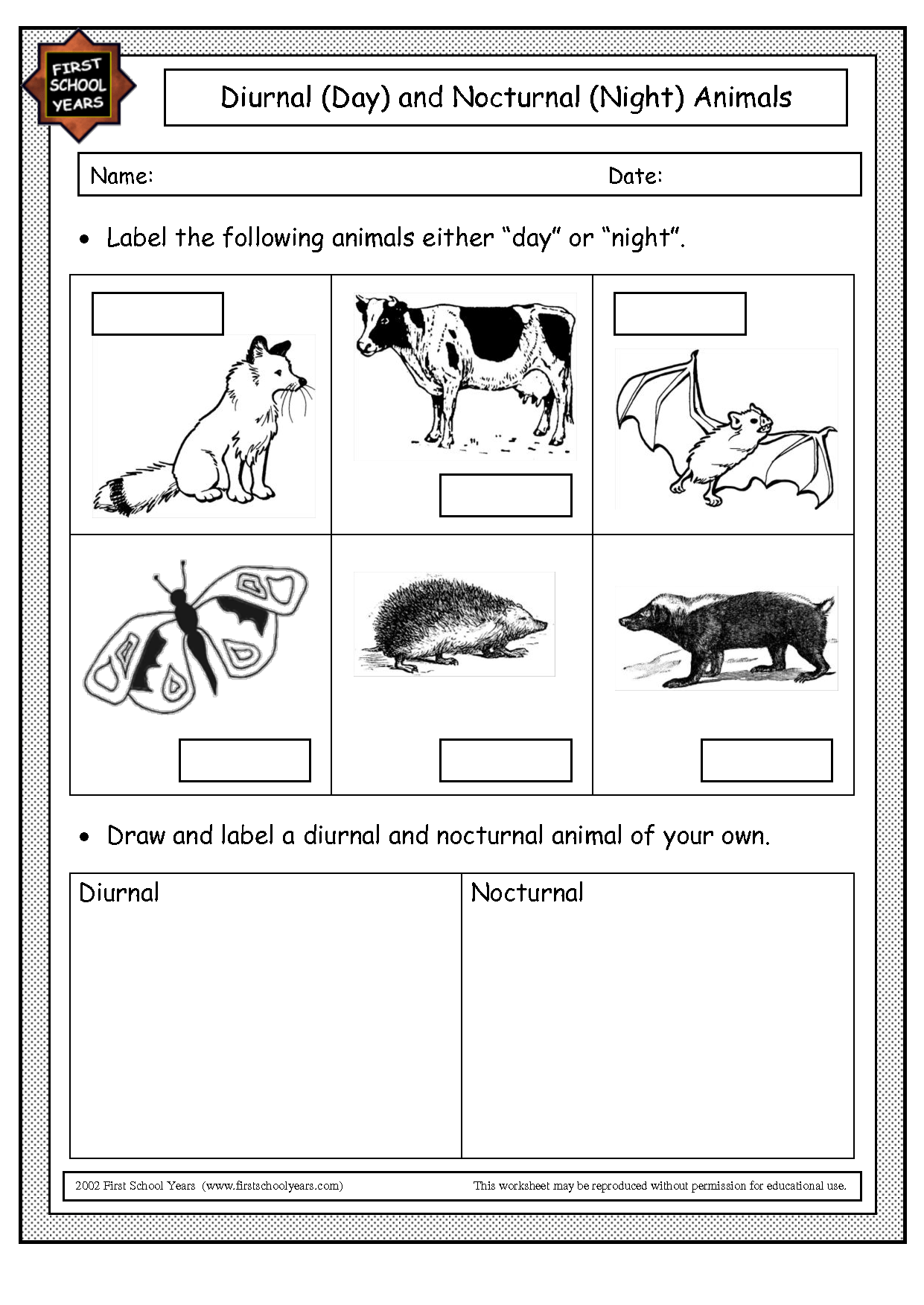 Image Result For Nocturnal Animals Worksheets Kindergarten
