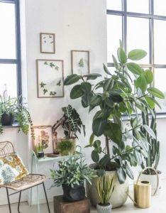 Use old wood stool in garage for planter display inside plant decor indoor also verzameling planten voor de woonkamer verschillende hoogtes rh za pinterest