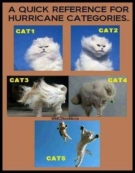Hurricane Matthew Update  Cat4 Storm Targets Fl East