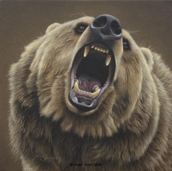 Griz Close And Personal Animals In Art 4 Bears Wildlife