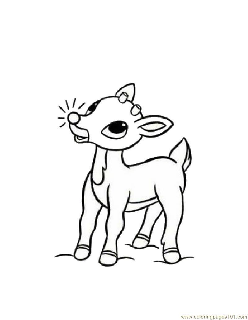 Coloring Pages Baby Deers Mammals > Deer Free Printable
