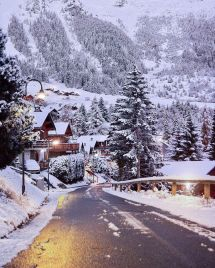 Winter Wonderland Scenes Christmas