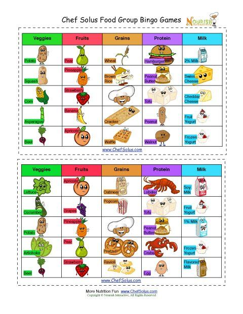 Four Basic Food Groups Worksheets