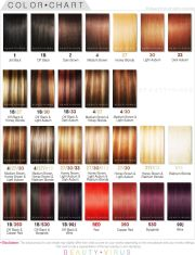 wonderful ion red hair color chart