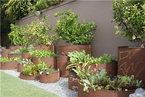 A Raised Bed Garden Constructed Of Industrial Steel Pipes Z
