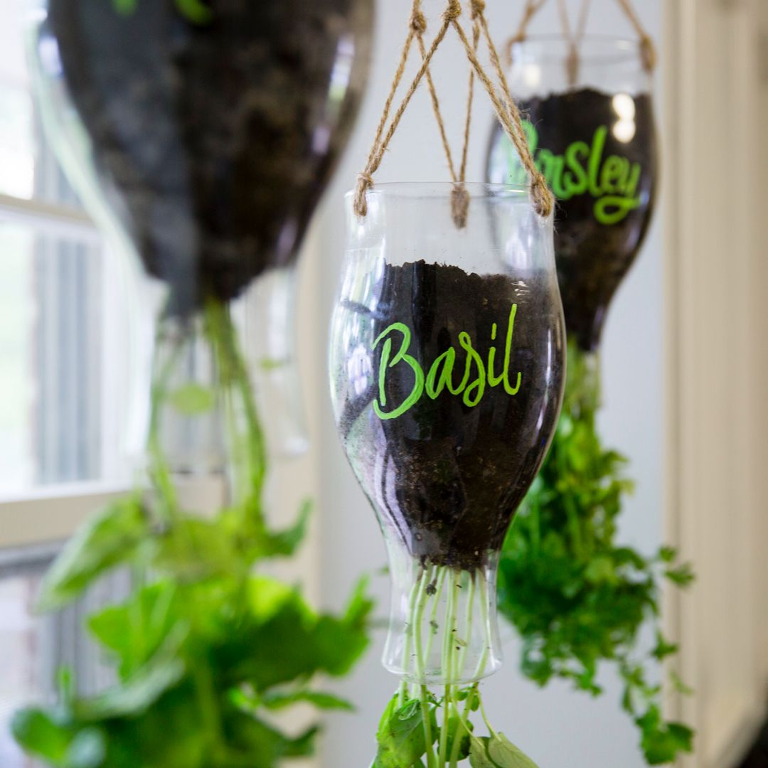 DIY Califia Hanging Planter Gardens Planters And Hanging Herbs