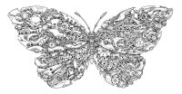 Imagimorphia: An Extreme Coloring and Search Challenge ...
