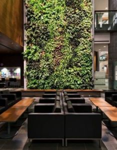 Image of from gallery university ottawa kwc architects diamond schmitt courtesy also muro verde fachadas verdes pinterest building ideas green rh