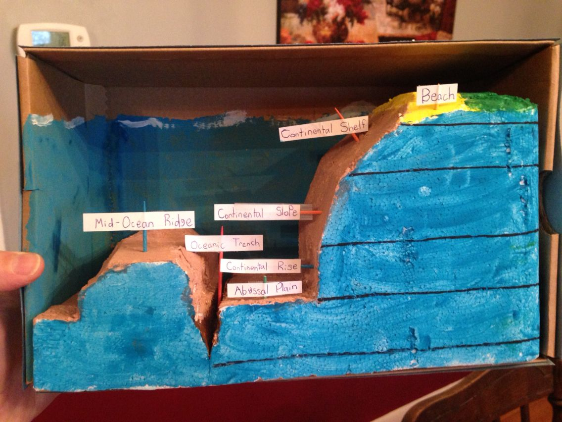 Ocean Floor Diorama Carved From Extra Styrofoam Out Of A Package Dimensions Aren T Exactly