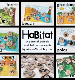 Habitat Worksheet Kindergarten   Printable Worksheets and Activities for  Teachers [ 1517 x 2048 Pixel ]