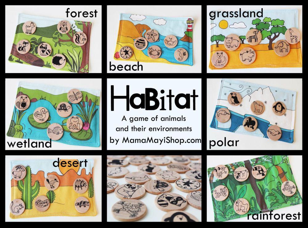 medium resolution of Habitat Worksheet Kindergarten   Printable Worksheets and Activities for  Teachers