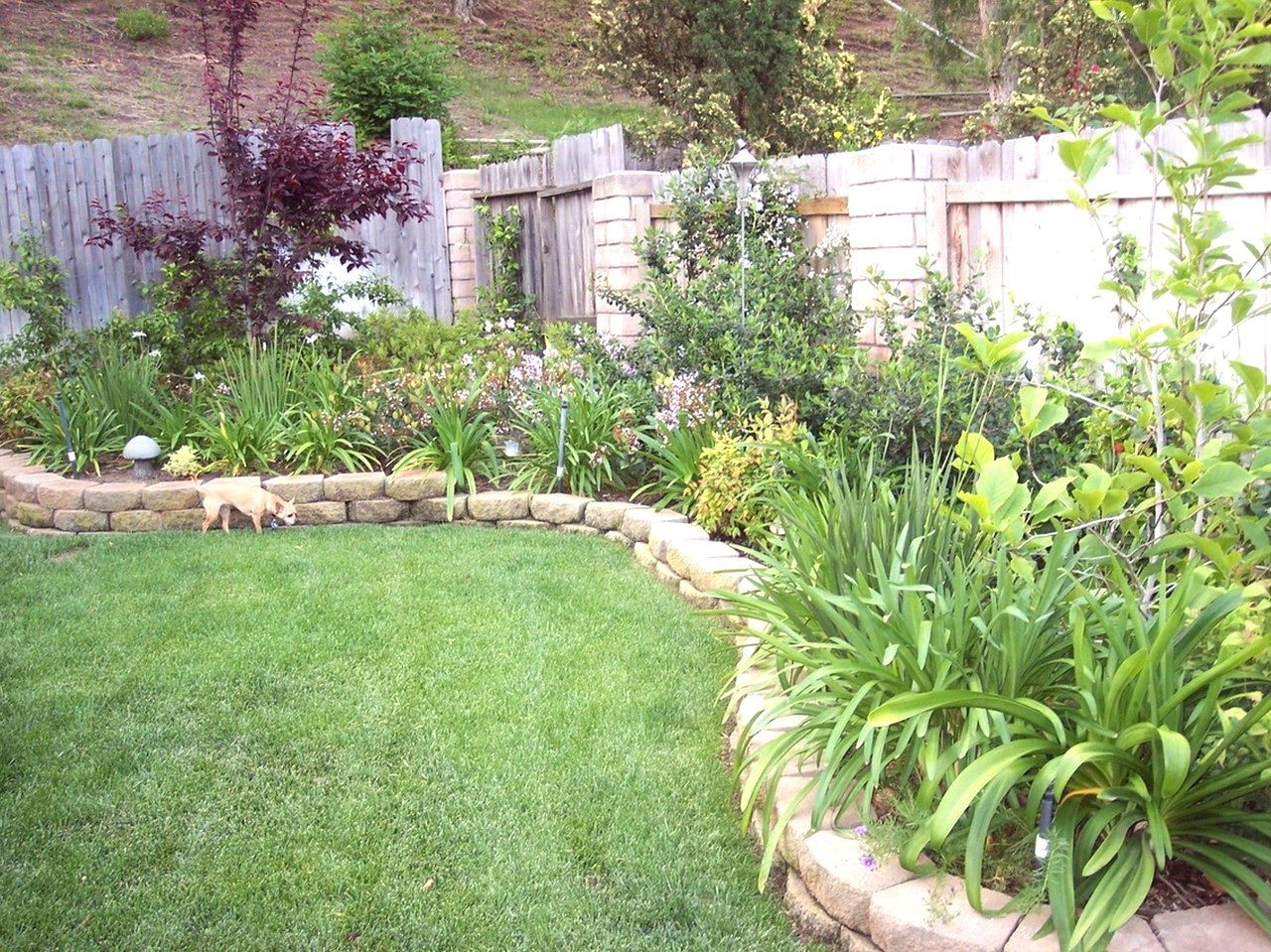 Garden Inspiration Nz Small Garden Landscaping Ideas Nz The Garden