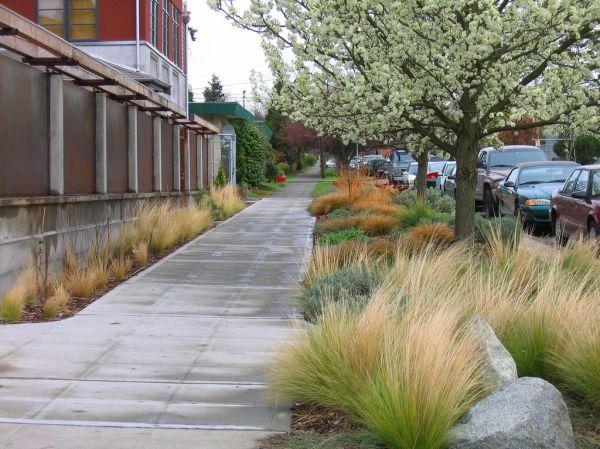 favorite neighborhood garden