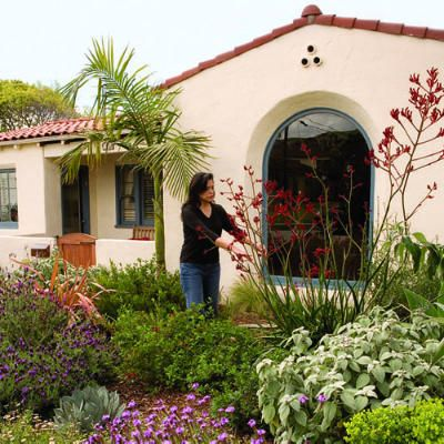 Modern Drought Tolerant Front Yards Google Search Landscape