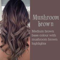 Mushroom Brown | Hair | Pinterest | Mushrooms, Brown and ...