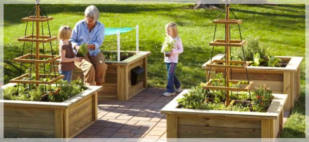 Box Garden Designs Garden Box Design Ideas Resume Format Download