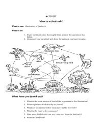 Food Web Worksheet 6th Grade: sample lesson plan in ...