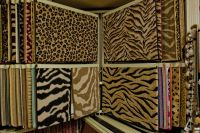 leopard carpeting  Floor Matttroy