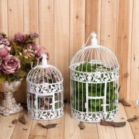 Birdcages on a shelf or from the ceiling. I saw some at ...