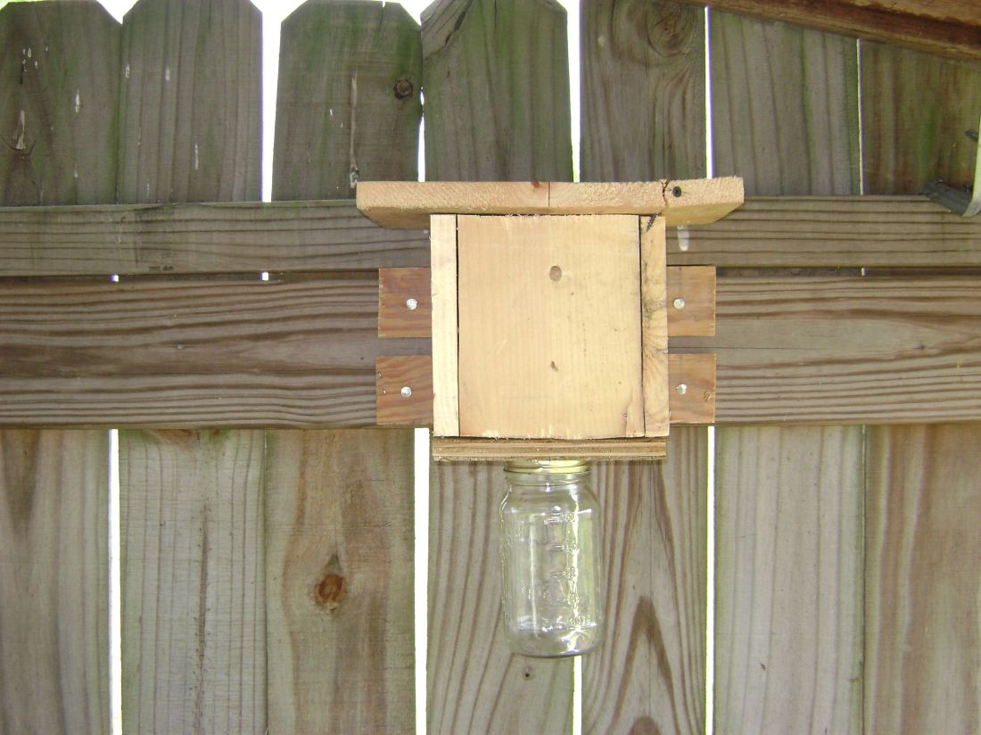 how to get rid of bumble bees on my deck