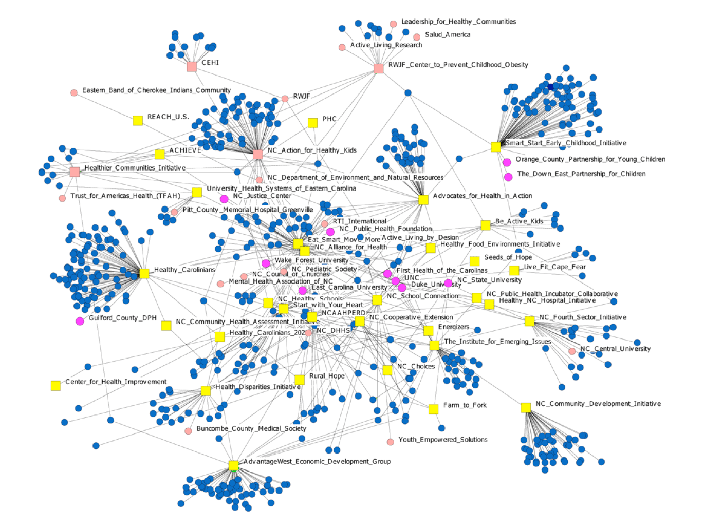Visualizing The Landscape Of Action Networks An Application Of