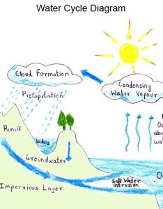 Water cycle wikipedia soil and conservation essay persuasive words by sercan also custom essays term papers research for master students rh diariosoficiais