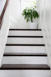 Love white stairs with a dark chocolate brown top! Exactly ...