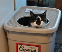 good idea for litter box in the motorhome | Motorcoach ...