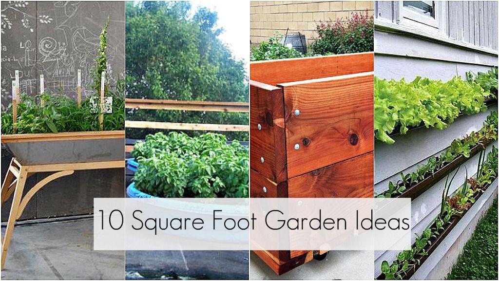 Small Square Garden Ideas