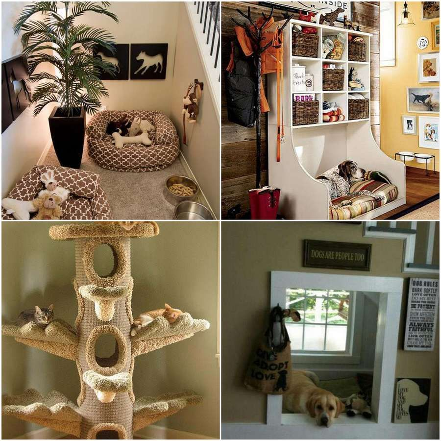 Ideas For A Pet Friendly Home Pet Home Friendly Pinterest