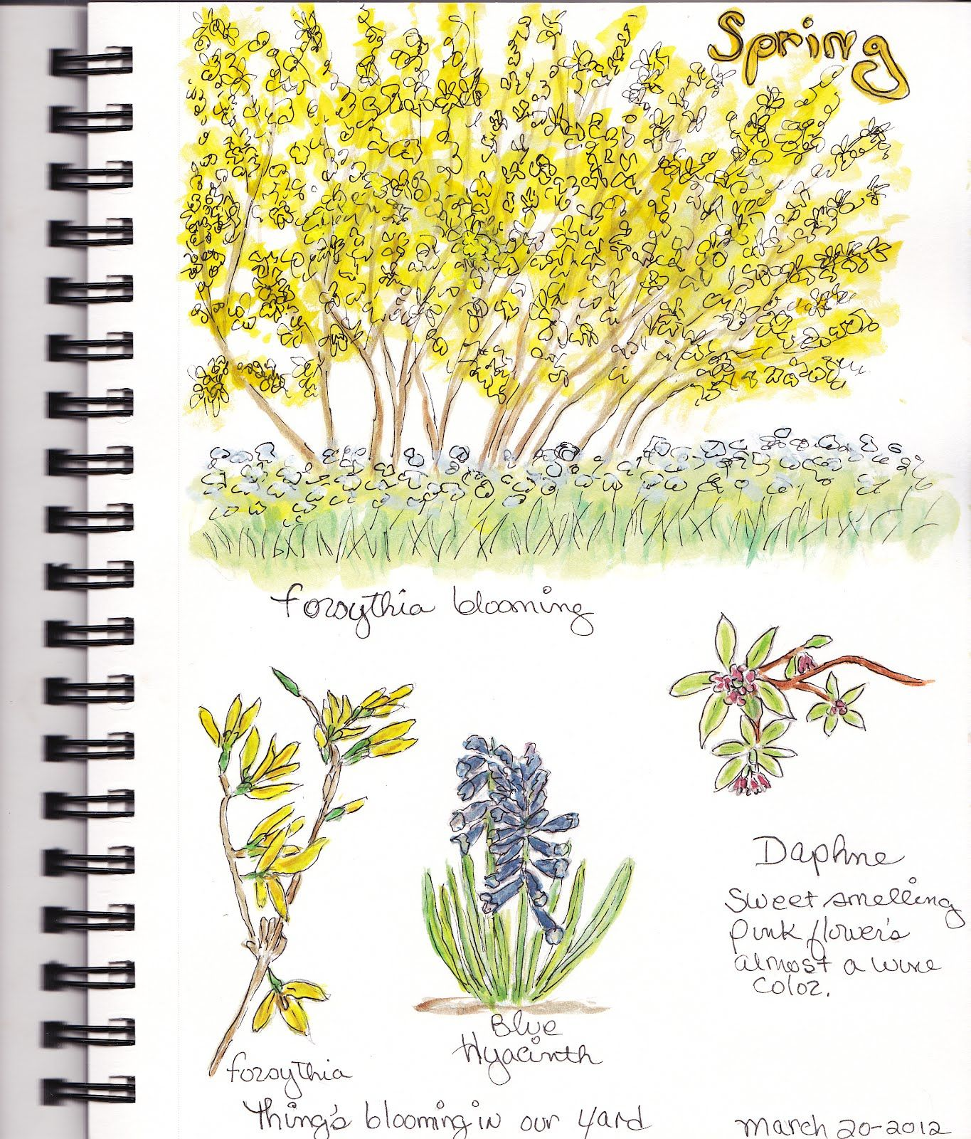 Beautifullllll Nature Journal Pages
