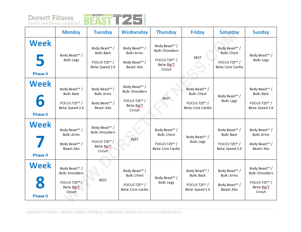Body Beast Focus T25 Hybrid Workout